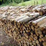 Vente de bois du camping